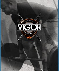 Vigor Performance